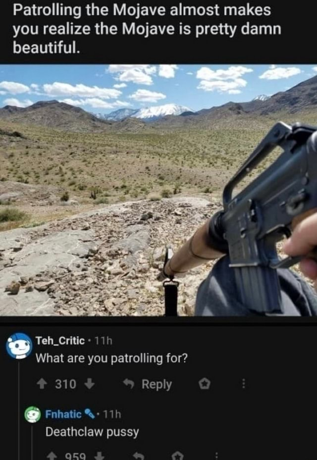 Patrolling the Mojave almost makes you realize the Mojave is pretty damn beautiful. Teh Critic What are you patrolling for 310 Reply Fnhatic Deathclaw pussy memes