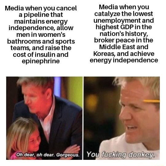 Media when you cancel a pipeline that maintains energy independence, allow men in women's bathrooms and sports teams, and raise the cost of insulin and epinephrine Oh'dear, oh dear. Gorgeous. Media when you catalyze the lowest unemployment and highest GDP in the nation's history, broker peace in the Middle East and Koreas, and achieve energy independence memes