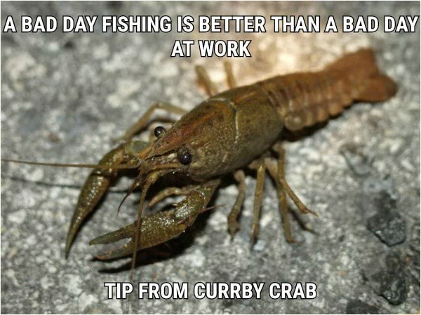 ABAD DAY FISHING IS BETTER THAN A BAD DAY ATWORK TIP FROM CURRBY CRAB meme