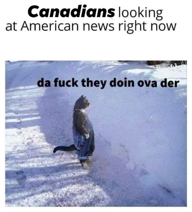 Canadians looking at American news right now da fuck they doin ova der memes