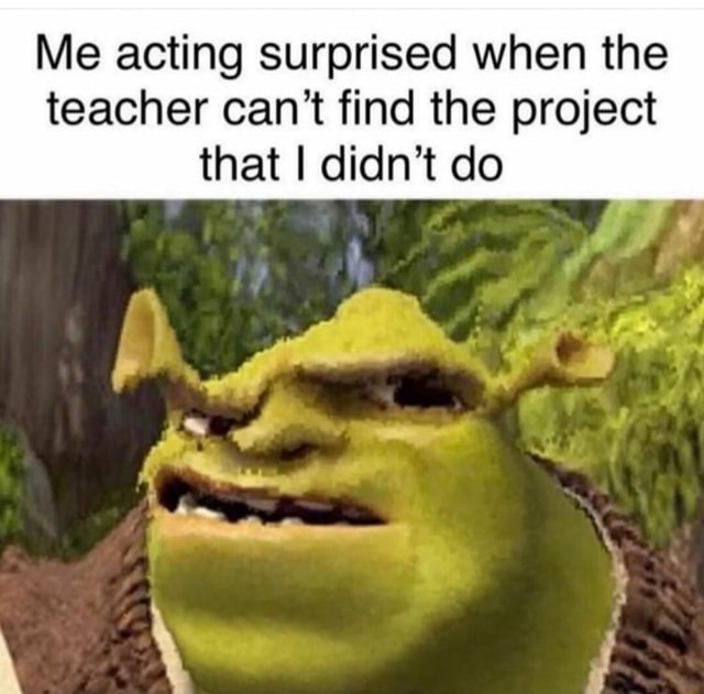 Me acting surprised when the teacher can not find the project that I didn't do wt meme