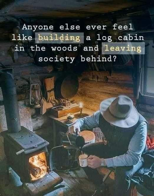 Anyone else ever feel log.cabin. in the woods and leaying society behind meme