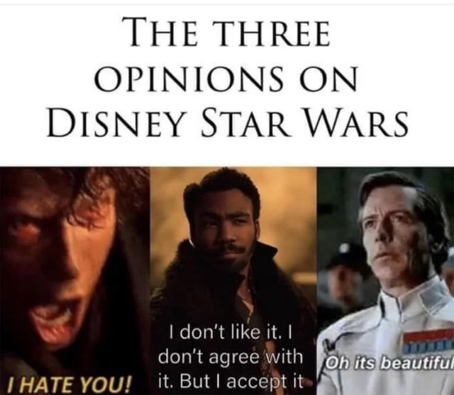 THE THREE OPINIONS ON DISNEY STAR WARS I do not like it. I do not agree with I its Beautiful HATE YOU it. But accept it memes