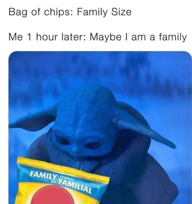 Bag of chips Family Size Me 1 hour later Maybe am a family meme