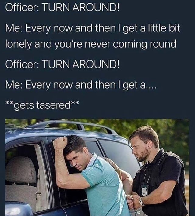 Officer TURN AROUND Me Every now and then I get a little bit lonely and you're never coming round Officer TURN AROUND Me Every now and then I get a **gets tasered** memes