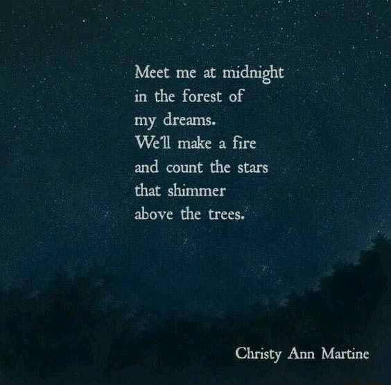 Meet me at midnight in the forest of my dreams. We'll make a fire and count the stars that shimmer above the trees. Christy Ann Martine meme