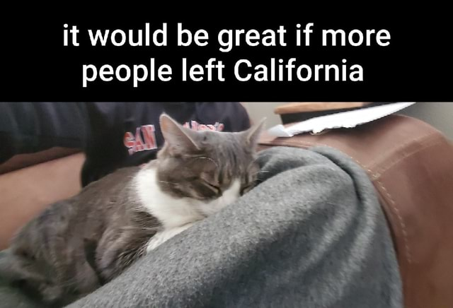 It would be great if more people left California memes