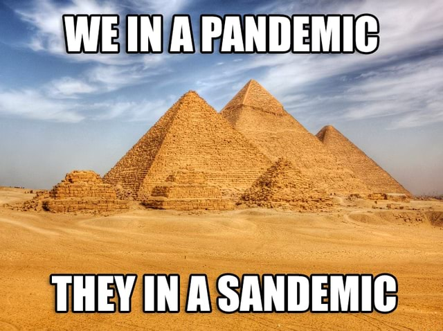 PANDEMIC THEY IN A SANDEMIC meme