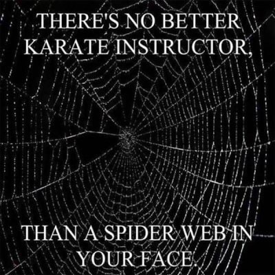 THERE'S. NO BETTER KARATE ASSERUCTOR, SPIDER memes