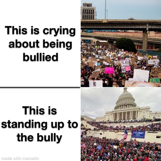 This is crying about being bullied This is standing up to the bully with memes