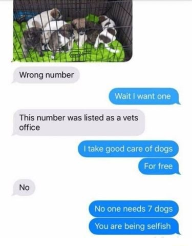 Wrong number This number was listed as vets office No Wait I want one take good care of dogs For free No one needs 7 dogs You are bei meme