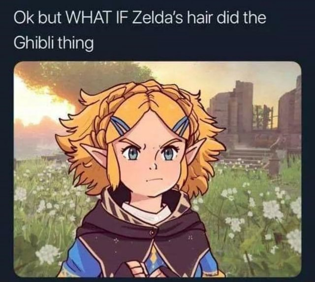 Ok but WHAT IF Zelda's hair did the Ghibli thing AM meme
