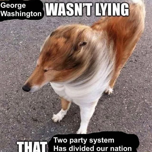 George Washing WASNTLYING Two party system memes