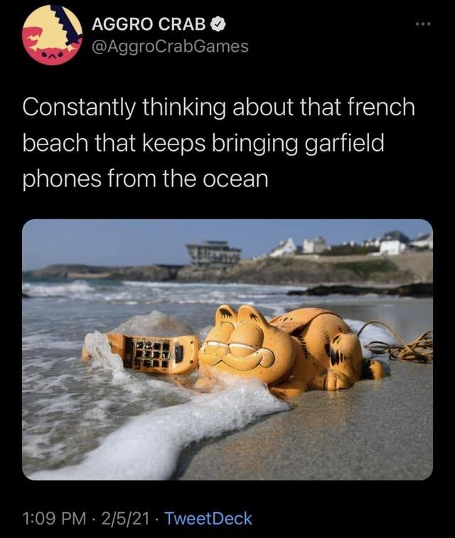 Constantly thinking about that french beach that keeps bringing garfield phones from the ocean PM   TweetDeck memes