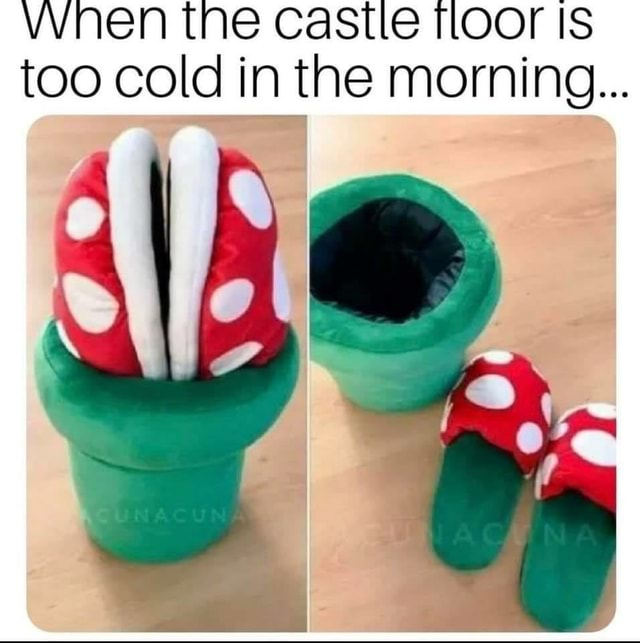 Vvnen the castle floor Is too cold in the morning memes