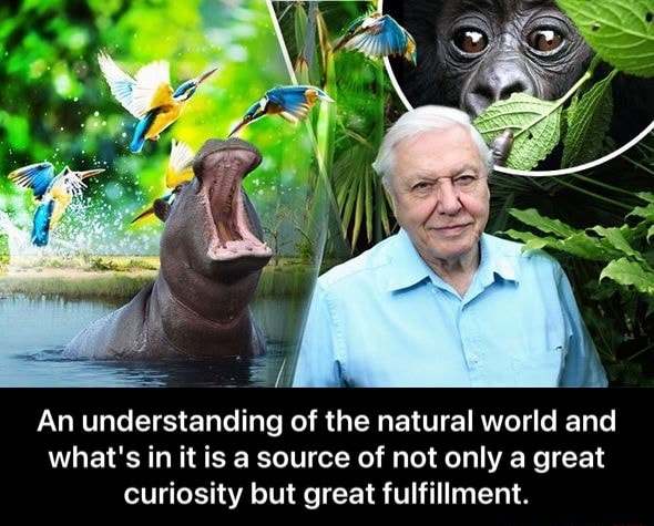 An understanding of the natural world and what's in it is a source of not only great curiosity but great fulfillment.  An understanding of the natural world and what's in it is a source of not only a great curiosity but great fulfillment memes