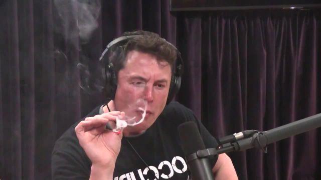 Elon Musk and the Bluebird of Happiness meme - Video & GIFs | необъятное пространство meme,пространство meme,expanse meme,the expanse meme,pot meme,weed meme,elon musk smokes pot meme,elon musk smokes marijuana meme,elon musk smokes meme,elon musk smokes joint meme,elon musk smokes weed meme,marijuana meme,anything and everything meme,vini vici meme,pixel and vini vici anything and everything meme,pixel and vini vici anything and everything meme,blue bird of happiness meme,bluebird of happiness meme,синяя птица удачи meme,синяя птица meme,blue bird meme,bluebird meme,элонмаск meme,elonmusk meme,элон маск meme,elon musk meme