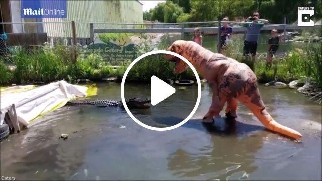 Dinosaur vs crocodile - Funny Videos - funvizeo.com - dinosaur, crocodile, animal