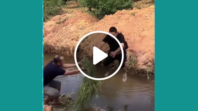 Jumping through the stream is not difficult, but..., prank, funny, friend, jump