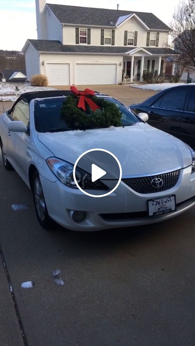 I Think We Found Out Who My Parents' Favorite Child Is - Video & GIFs | reddit, funny, late_post_but_i_think_we_found_out_who_my_parents