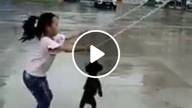 Man's Best Friend - video - funvizeo.com - funny dog videos,funny pet videos,skipping rope