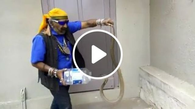 How To Catch Cobra With... a Plastic Jar