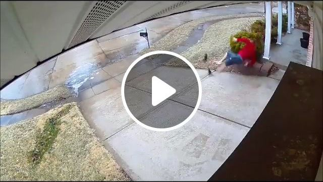 Forecast Was For Freezing Rain, But Had To Go Check It Out - Video & GIFs | reddit, funny, forecast_was_for_freezing_rain_but_had_to_go