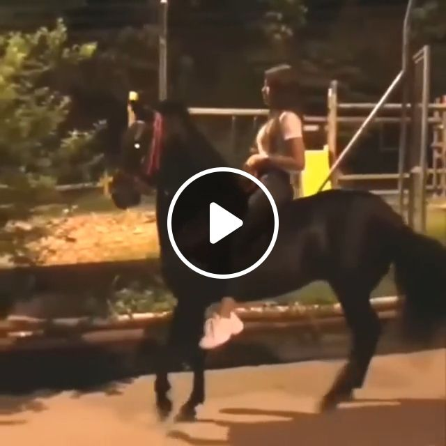 How To Slow Down A Fast Horse - Video & GIFs | black horse, funny, funny animal, ride a horse