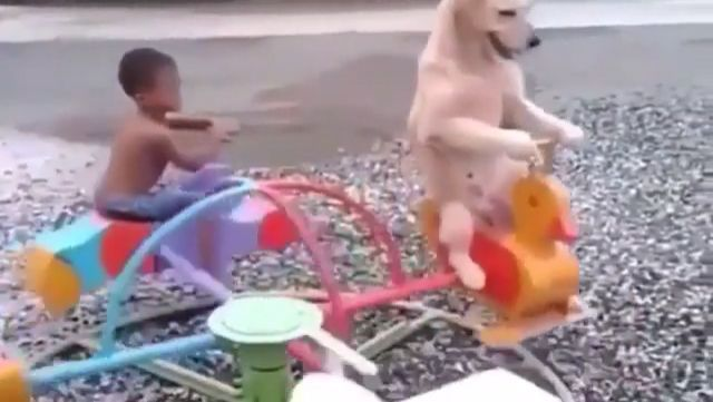 Game of childhood with man's best friend