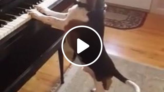 Sing And Play The Piano At The Same Time