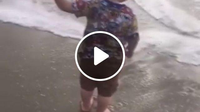 Gotta Go Fast GIFs, funny, funny dog videos, beach, kid