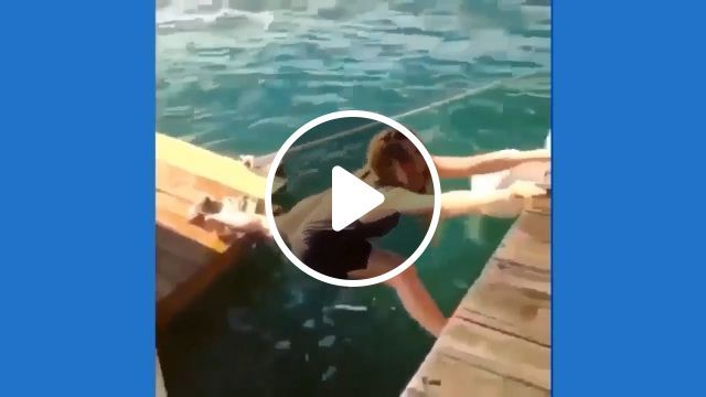 Be sure to anchor your boat before going to shore - video - funvizeo.com - boat, anchor, Boat Parking, humor, sea