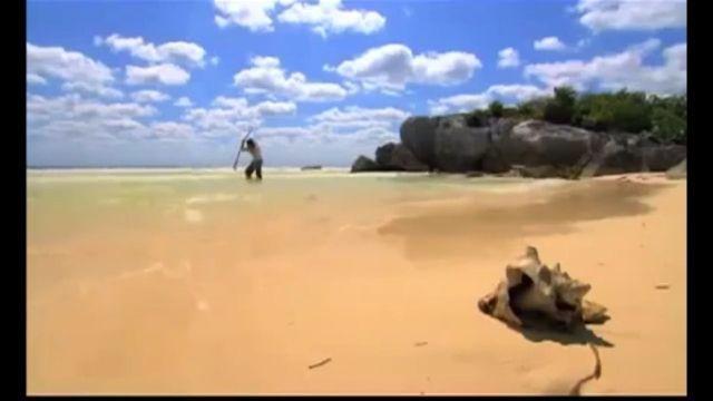 Robinson on a deserted island, lol - Funny Videos - funvizeo.com - robinson, island, funny, fish, bird, sea, beach, fishing