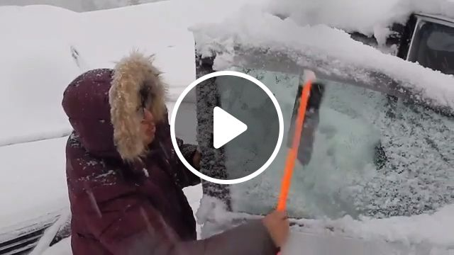 How to Remove Snow from Your Car?, snow, car, funny