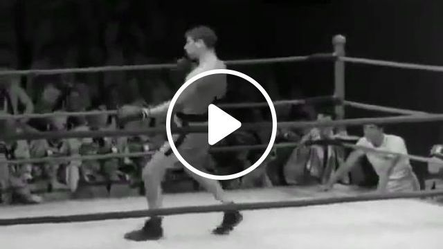 The Funniest Boxer Ever - Funny Videos - funvizeo.com - boxing, humor, funny videos, funny sport videos