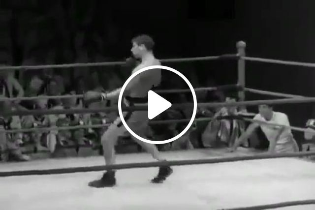 The Funniest Boxer Ever, boxing, funny, funny videos, funny sport videos