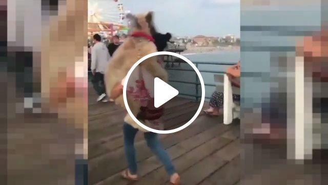She loves her dog very much. A Good Dog Owner!, dog, pet, owner