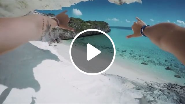 Enjoy Your Summer GIFs, beautiful nature gifs, sea, beach, dive, shark, summer, funny