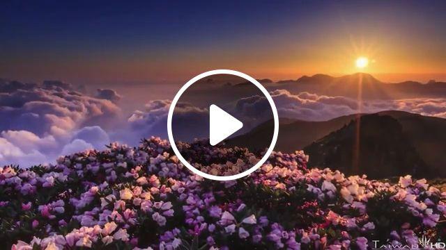 Beautiful Sunrise In The Mountains, beautiful nature, sunrise, mountain, flower, cloud