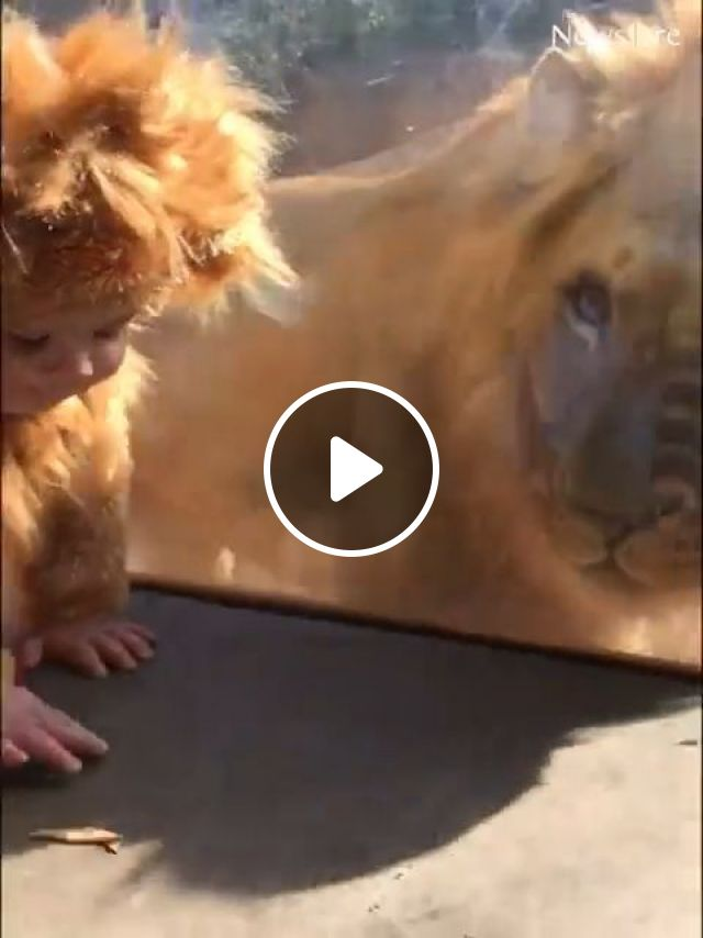 The Cutest And Most Adorable Babies - Video & GIFs   baby, adorable, cute, funny