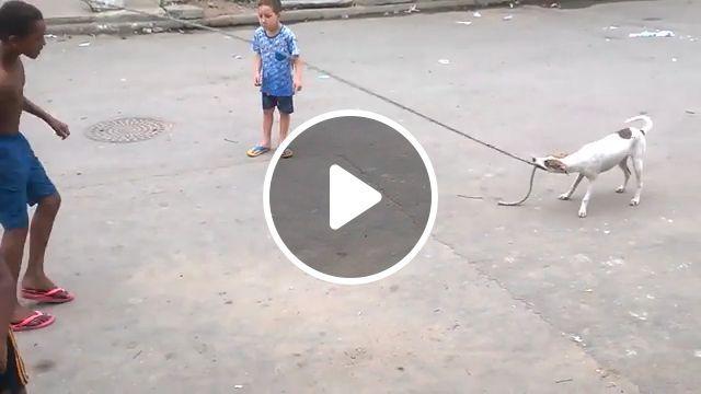 Children's favorite games in the neighborhood
