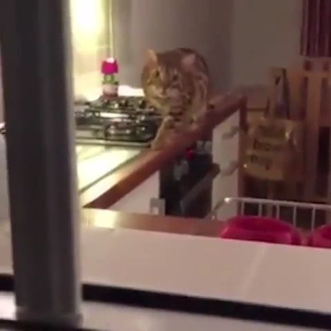 Unique move