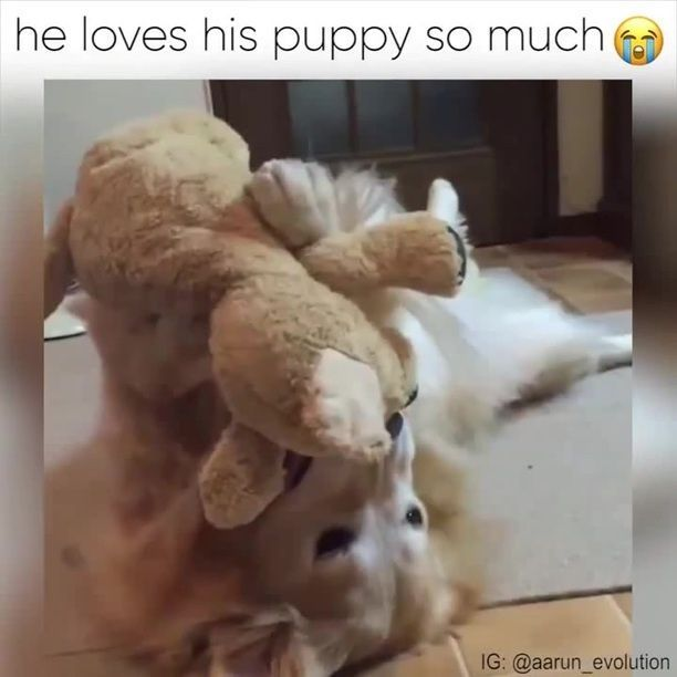 He loves his puppy so much