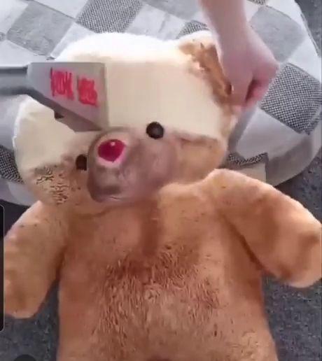 Dirty Teddy Bear - Funny Videos - funvizeo.com - satisfying,teddy bear,funny