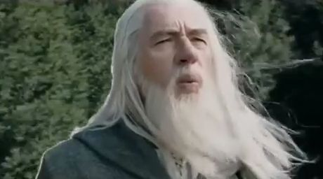 Flo Rida - Whistle by Gandalf - Funny Videos - funvizeo.com - lord,ring,hobbit,whistle,meme,funny