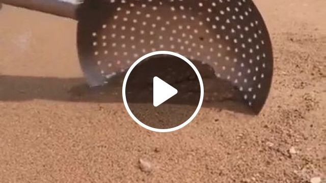 Surprise Under The Sea Sand - Video & GIFs   beach, sea, sand, funny, awesome, crab