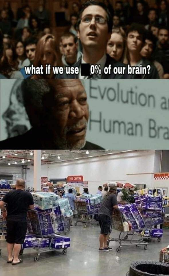 What if we use 0 of our brain meme