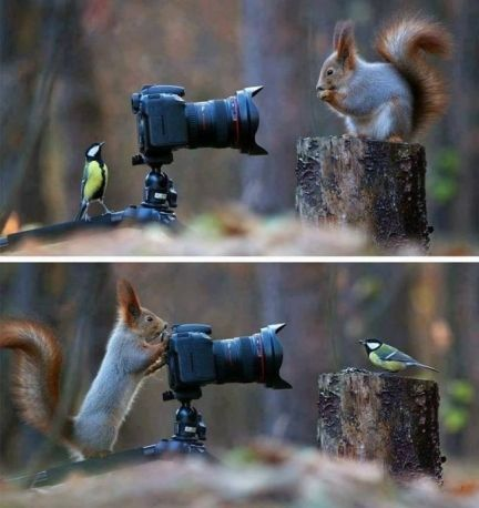 Smile Naturally for Photos