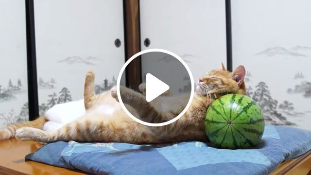 Watermelon pillow for good sleep