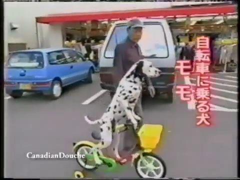 He likes cycling more than walking, lol